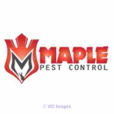 Get Relaible Pest Control Services In Mississauga At Affordable Prices Toronto - GTA, Ontario Annonces Classées
