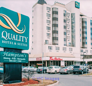 Hotels in toronto downtown - Quality Suites Toronto - GTA, Ontario Annonces Classées